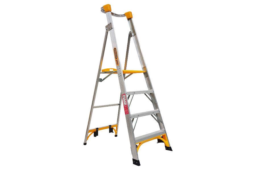 12m Platform Ladder